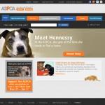 Good Cause Website